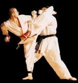 Karate Sparring