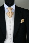 Black Suit Champagne Waistcoat Gold Cravat