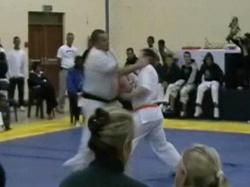 Karate Fight1