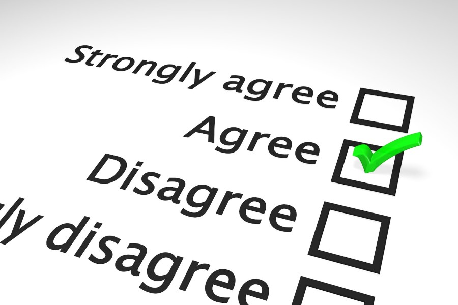 agree and disagree survey