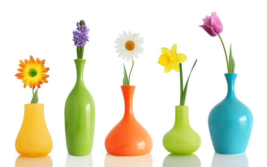 Joke Factory Flower Vase An Exploring South African