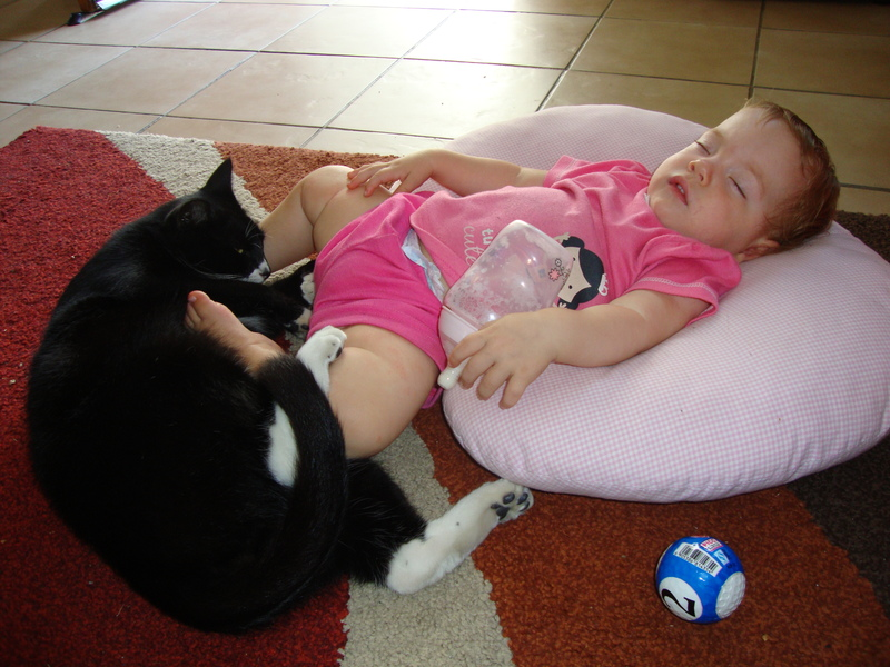 baby-jessica-lotter-sleeping-with-olympus-cat
