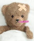 20080712_Sick_Bear