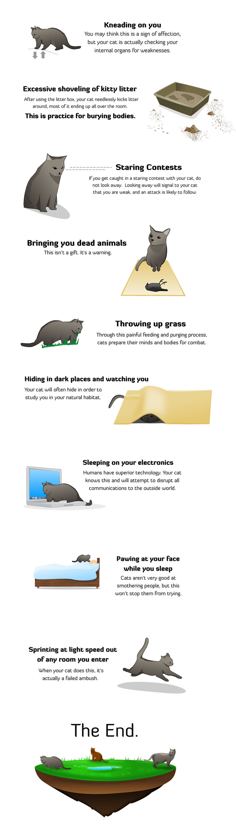 your cat is plotting to kill you by the oatmeal
