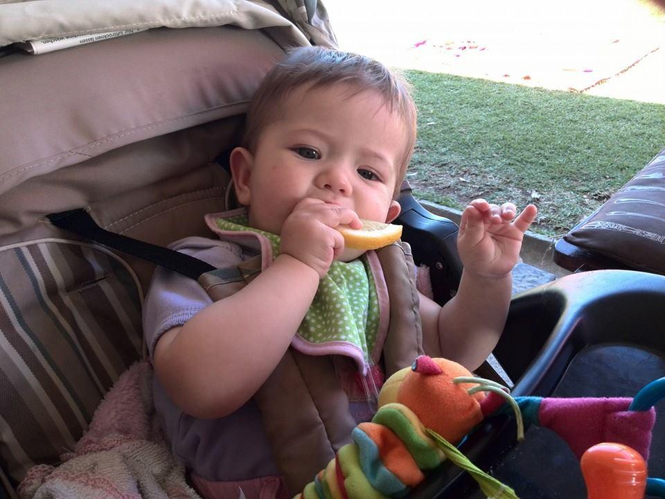 baby emily lotter eating a lemon
