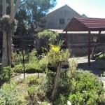 IMG_20150206_154008 weskus padstal nursery