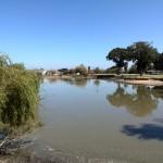 IMG_20150307_113046 strand high school strand duck pond