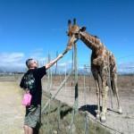 IMG_20150307_143616 evan granger feeding gerry the giraffe at the giraffe house