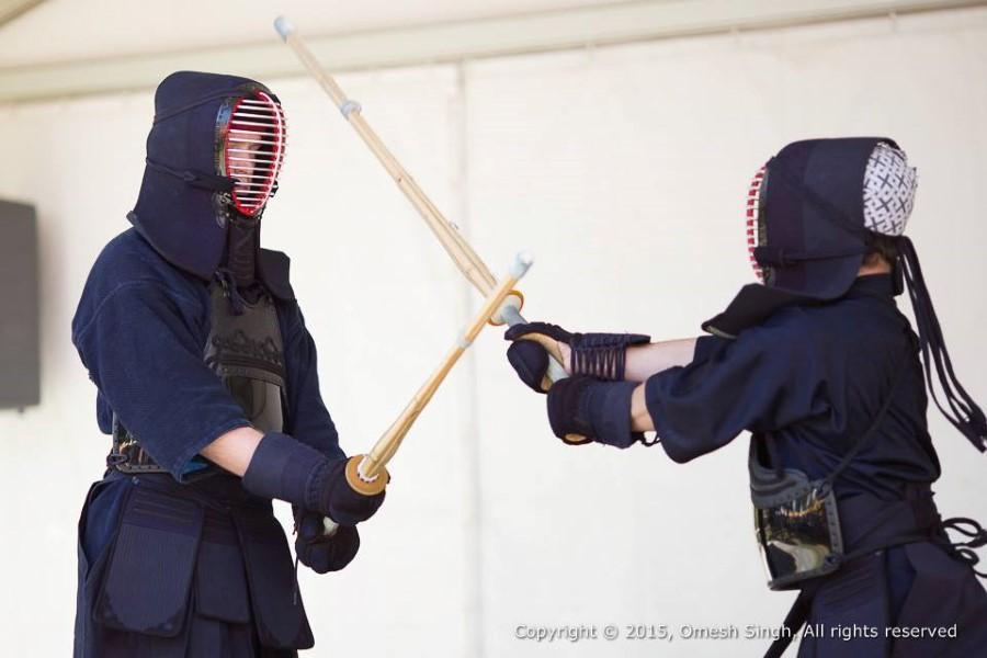 kendo at japan day 2015 at root 44 market