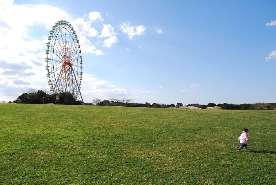 Hitachi Seaside Park in Hitachinaka, Ibaraki, Japan - ferris wheel