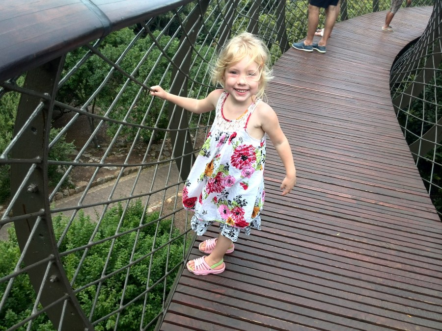 Kirstenbosch Centenary Tree Canopy Walkway boomslang bridge south africa cape town 5 jessica lotter