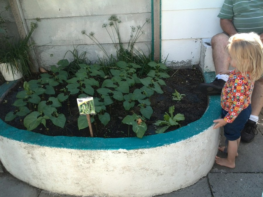 jessica lotter proudly standing next to her bean garden