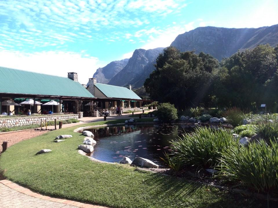 IMG_20150503_134338 red disa restaurant in harold porter botanical garden betty's bay