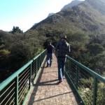 IMG_20150627_140904 crossing the bridge in harold porter botanical garden in betty's bay
