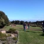 IMG_20150627_141349 going for a stroll in harold porter botanical garden in betty's bay