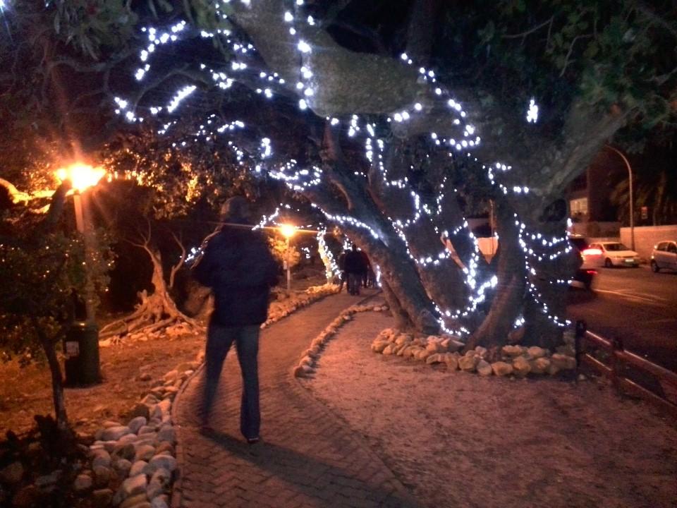 IMG_20150627_185851 gordons bay winter wonderland festival of lights milkwood trees