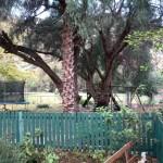 IMG_20150707_172915 rainbow glen accommodation in montagu