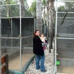 IMG_20150708_115950 chantelle lotter at birds paradise exotic bird breeder in robertson