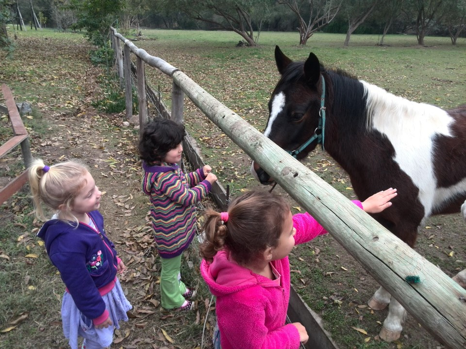 IMG_20150709_102048 kids feeding horse at rainbow glen accommodation in montagu
