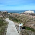 IMG_20150802_131659 scenic hermanus cliff path