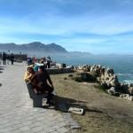 IMG_20150802_132309 scenic hermanus cliff path
