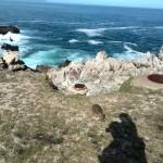 IMG_20150802_132334 scenic hermanus cliff path