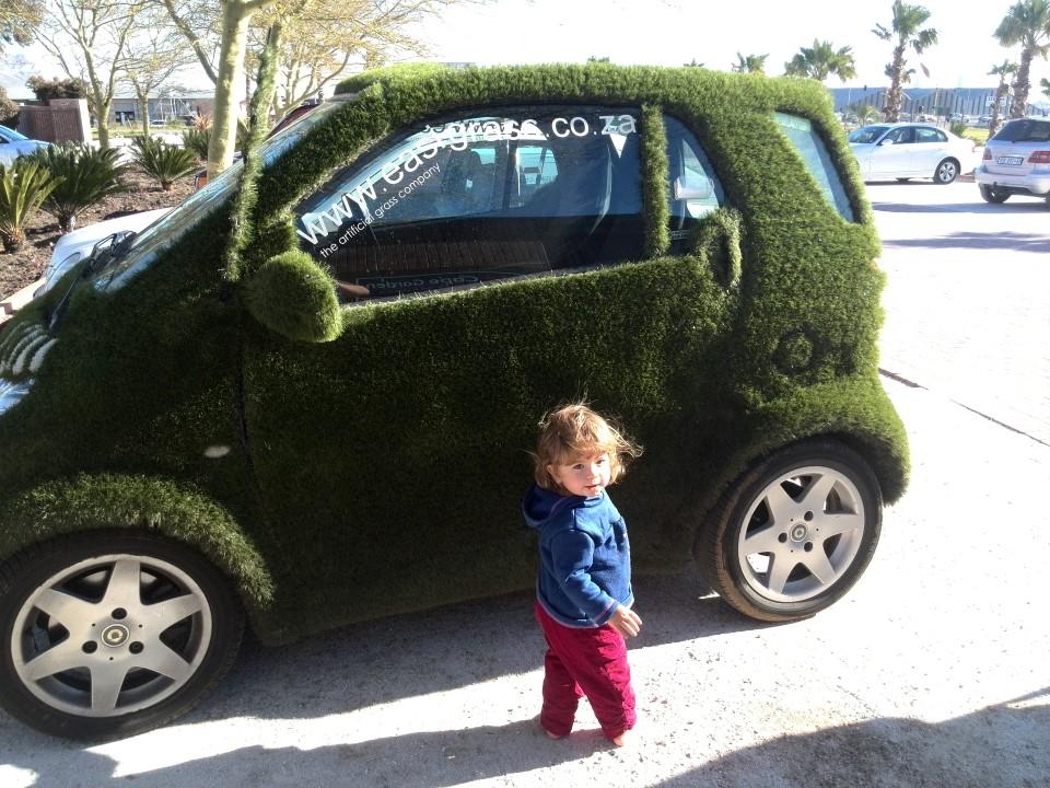 IMG_20150810_154221 easigrass artificial grass covered advert car