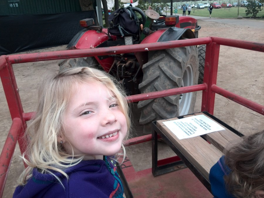 IMG_20150829_120757 jessica lotter enjoying her tractor ride at the lourensford harvest market