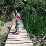 IMG_20150924_132652 walking across the foot bridge at helderberg farm on heritage day