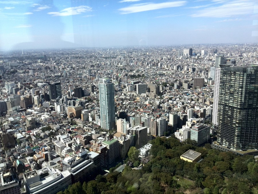 IMG_20141003_112844 view of tokyo from the tokyo metropolitan government building in shinjuku