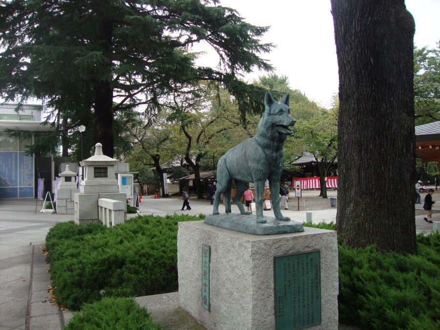 DSC07345 war dog at Yushukan War Memorial Museum in Chiyoda, Tokyo