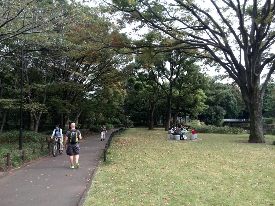 IMG_20141004_135342 lawns at kitanomaru park, chiyoda, tokyo