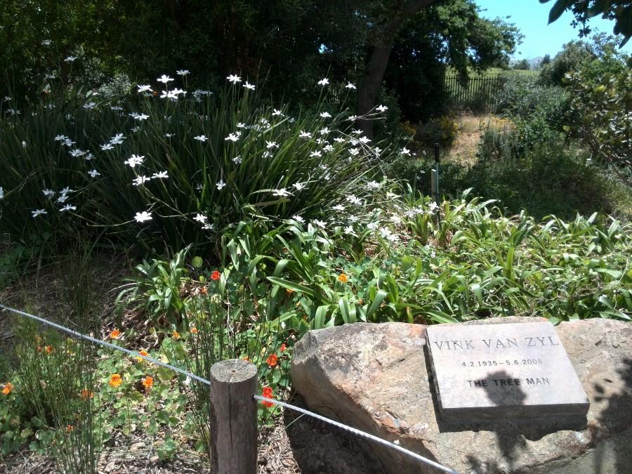 IMG_20151114_125118 vink's rock at vink's arboretum in durbanville
