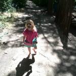 IMG_20151122_144322 jessica walking trail at helderberg farm in stellenbosch