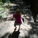 IMG_20151122_144323 jessica walking trail at helderberg farm in stellenbosch