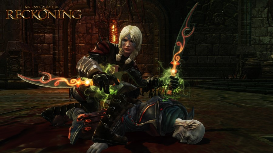 kingdoms of amalur reckoning rpg - finesse assassins art