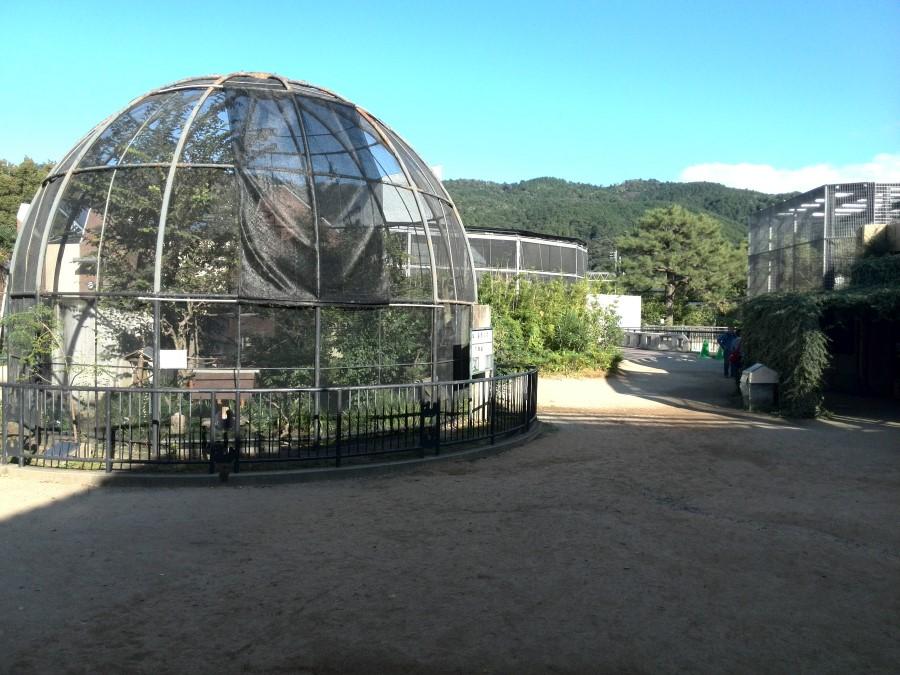 IMG_20141007_152431 animal enclosures at kyoto municipal zoo, kyoto, japan