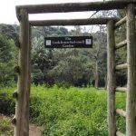 IMG_20160412_145456 look listen feel smell garden in the KwaZulu-Natal National Botanical Garden