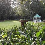 IMG_20160412_150406 wedding area in the KwaZulu-Natal National Botanical Garden