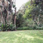 IMG_20160412_150413 green lawns in the KwaZulu-Natal National Botanical Garden