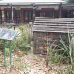 IMG_20160412_151357 insect hotel at the KwaZulu-Natal National Botanical Garden