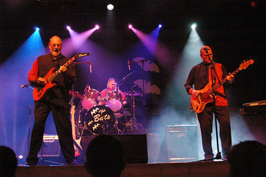 the bats south african band electric guitar