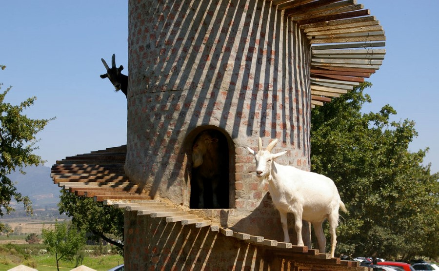 fairview wine and cheese estate goat tower 1