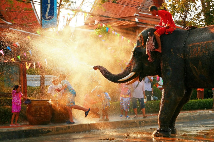 thailand elephant spraying man with water