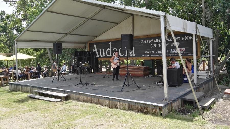 musician-jamming-at-root-44-market-in-stellenbosch